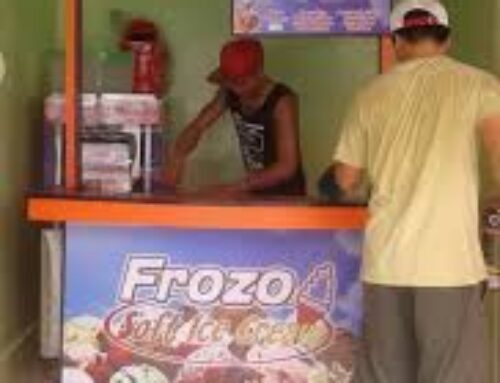 How to Franchise Frozo Ice Cream